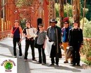 Gator Nation Band