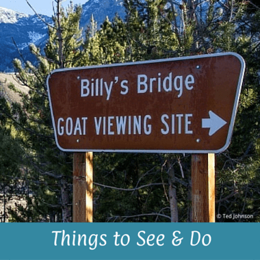 Things to See & Do